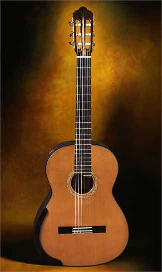 Joshia De Jonge Guitars International Used Classical